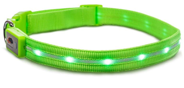 Blazin Safety LED Dog Collar – USB Rechargeable with Water Resistant Flashing Light