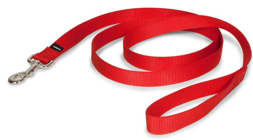 PetSafe Nylon Dog Leash review