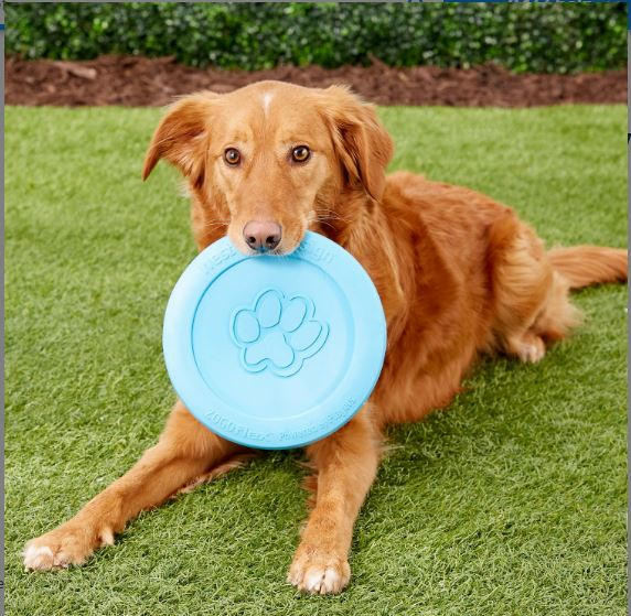 West Paw Zogoflex Durable Dog Frisbee