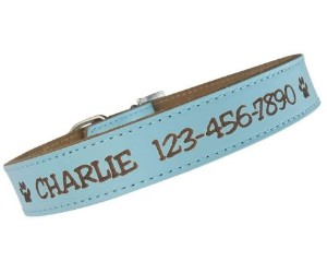 Custom Catch Personalized Dog Collar