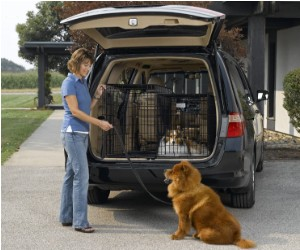 Midwest Side-by-Side Double Door SUV Crate with Plastic Pan review