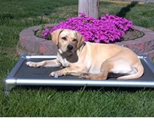 Kuranda Dog Bed Chewproof Elevated Dog Bed review