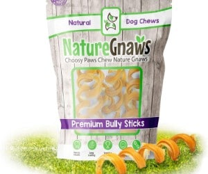 Nature Gnaws Bully Stick Springs review