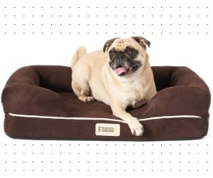 Friends Forever Orthopedic Dog Bed Lounge review