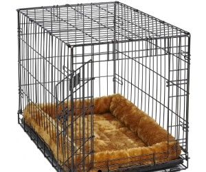 MidWest Bolster Pet Bed for Crates review