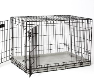 PetFusion PuppyChoice Dog Crate Pad review