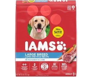 IAMS Proactive Health Large Adults review