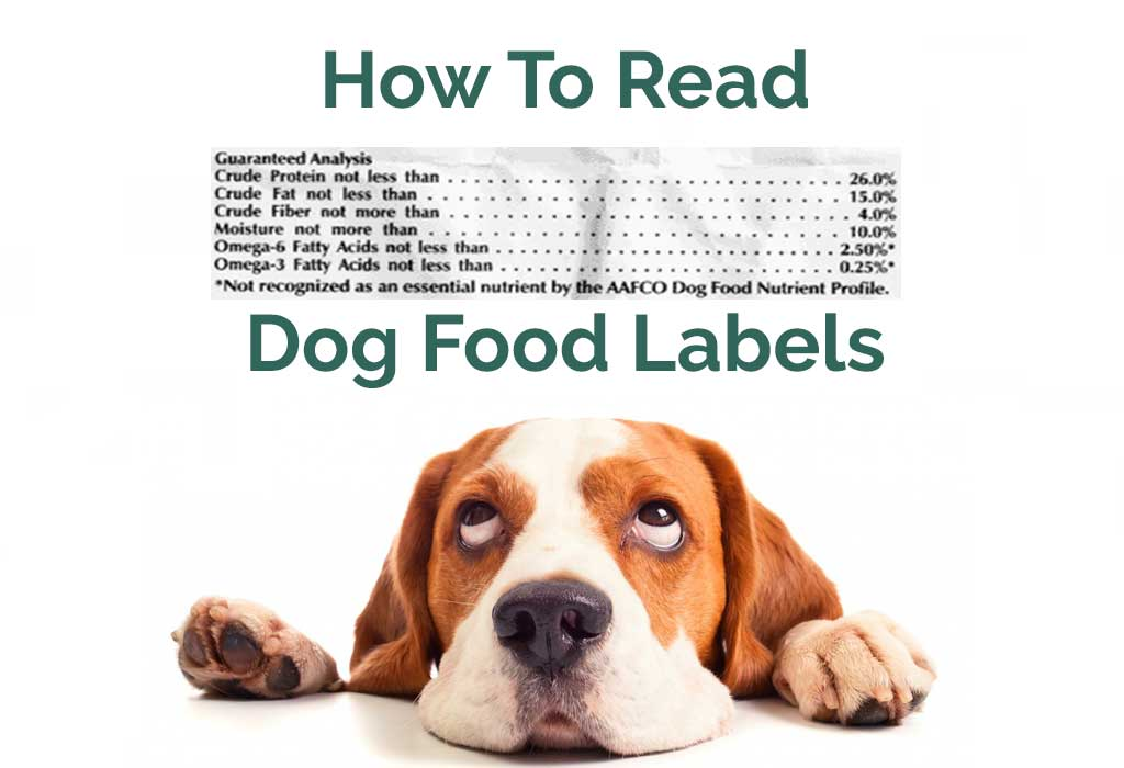 Things You Need To Know About Dog Food Nutrition Labels › Pet Snacks