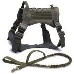 Ranger Green Harness and Leash