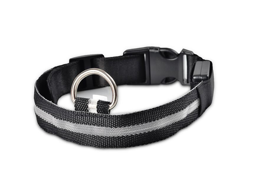 Dogs Nylon LED Collar