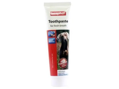 toothpaste for dogs
