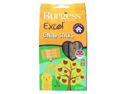 burgess excel