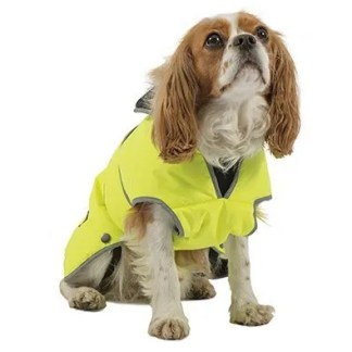 hi-vis dog coat