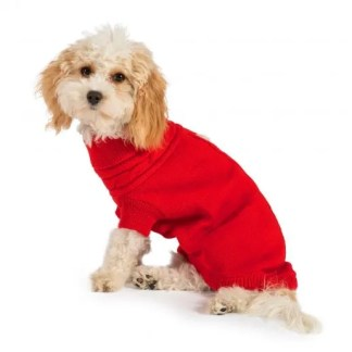 red jumper for pets