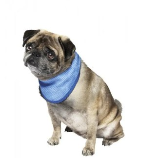 cooling bandana for pets