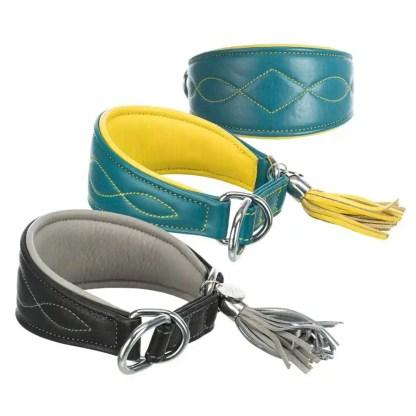 hound collar
