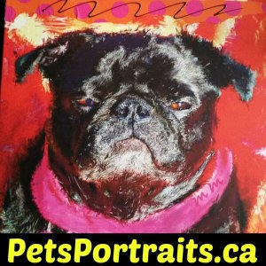 "<imgsrc=""image.jpg""alt =""order black pug portrait""title=""Black pug portrait""/>"