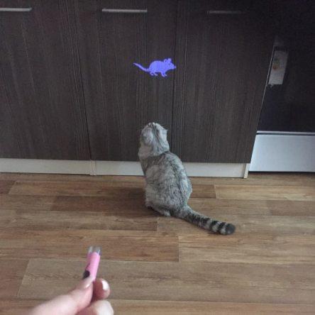 Laser pour chat – Jouet interactif avec pointeur souris lumineux