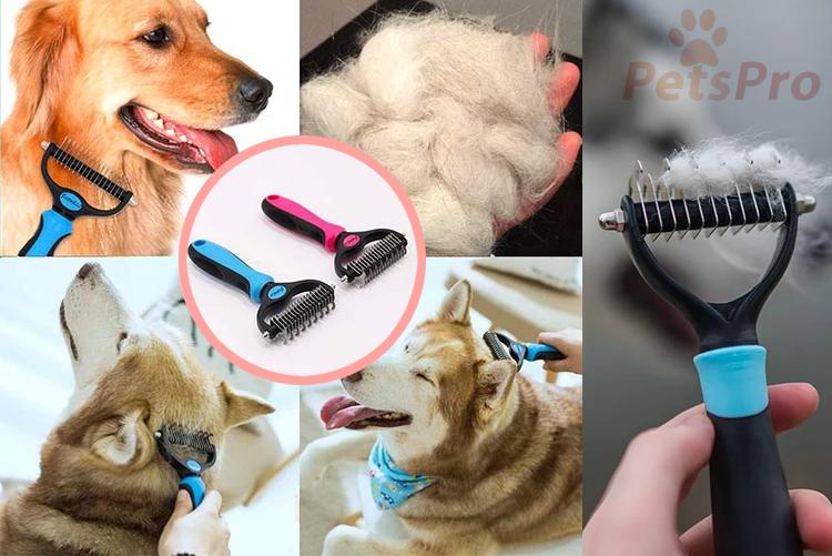 brosse toilettage pour chien
