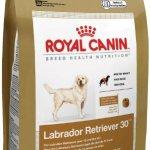 Royal-Canin-Labrador-Retriever-Dry-Dog-Food-30-Pound-Bag-0-0