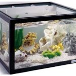 Stationary-Stand-for-the-25-Gallon-Oceanic-Aquarium-0
