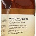 Nekton-Iguana-Vitamins-and-Amino-Acids-700gm-0-0