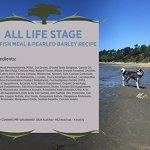 Blackwood-Pet-Food-All-Life-Stages-Special-Diet-Sensitive-Skin-0-0
