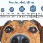 Blackwood-Pet-Food-All-Life-Stages-Special-Diet-Sensitive-Skin-0-2