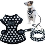 KOOLTAIL-Puppy-Harness-Leash-Small-Dog-Soft-Mesh-Pet-Vest-0