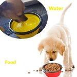 Ogori-Collapsible-Pet-Bowl-Food-Grade-Silicone-BPA-Free-FDA-Approved-Foldable-Expandable-Cup-Dish-for-Pet-Cat-Food-Water-Feeding-Portable-Travel-Bowl-by-Ogori-0-1