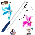 Pet-Fit-For-Life-2-Fish-and-Feather-Teaser-and-Exerciser-For-Cat-and-Kitten-Cat-Toy-Interactive-Cat-Wand-0-0