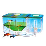 Saim-Aqua-Nursery-Automatic-Circulating-Hatchery-Aquarium-0
