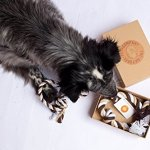 The-Natural-Pet-Company-Two-Fantastic-Quality-Dog-Toys-in-Beautiful-Gift-Box-Tug-of-War-Dog-Rope-Toy-Double-Pack-for-Interactive-Play-with-Your-Dog-0-1