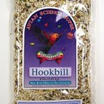 Volkman-Seed-Avian-Science-Super-Hookbill-0