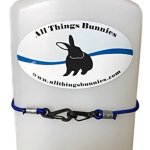 All-Things-Bunnies-Small-Animal-Water-Bottle-0-0