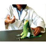 Auspex-Avian-Bird-Restrainer-Large-Medicate-Exam-Nail-Clipping-Feeding-Wings-0