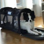 Beautyrest-Soft-Sided-Portable-Pet-Carrier-0-1