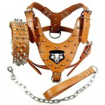 Benala-Punk-Wolf-Spiked-Studded-Leather-Dog-Pet-Harness-Collar-and-Leash-Set-for-Large-Dogs-Pitbull-Boxer-Bully-0