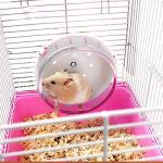 Best-Quality-Cat-Toys-Plastic-Hamster-Wheel-Mouse-Rat-Exercise-Silent-Running-Spinner-Wheel-Ball-Toys-for-Hamster-Pet-Supplies-Hamster-Toy-by-Viet-SC-1-PCs-0-0