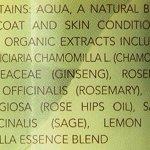 Best-Shot-Scentament-Spa-Pet-Body-Splash-8-Ounce-LemonVanilla-0-0