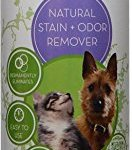CleanGreen-Furniture-Refresher-for-Pet-Odors-for-Dogs-and-Cats-16-oz-0