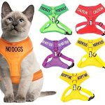 Dexil-Color-Coded-Cat-Harness-Warning-Alert-Vest-Padded-and-Water-Resistant-Let-Others-Know-Your-Cat-in-Advance-0