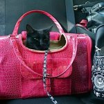 Faux-Crocodile-Travel-Bag-wMatching-Coin-Purse-Tote-Carrier-Pink-by-mpet-0-0