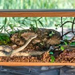 Galapagos-05054-Cypress-Tank-Mulch-Forest-Floor-Bedding-8-Quart-Natural-0-0