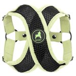 Gooby-Active-X-Step-in-Harness-Choke-Free-Small-Dog-Harness-with-Synthetic-Lambskin-Soft-Strap-0
