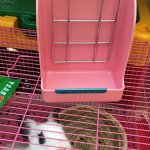 Hay-Feeder-Pet-Rabbit-Cage-Rack-Manger-Easy-Install-Less-Wasted-Free-Food-Dispenser-Clean-Dry-for-Guinea-Pig-Rabbits-Bunny-Chinchilla-0-0