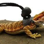 Ogle-Lizard-Leash-Limited-Edition-Black-Web-0-1