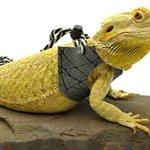Ogle-Lizard-Leash-Limited-Edition-Black-Web-0
