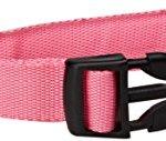 OxGord-LED-Pet-Neck-Collar-Flashing-Color-Light-Up-Night-Safety-Strap-Medium-Pink-0-0