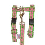 Pink-Marching-Turtles-on-Neon-Green-Adjustable-Ferret-Harness-with-Bell-and-Matching-4-Ft-Leash-0